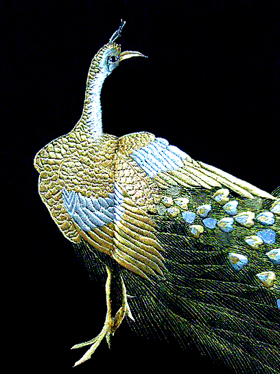 embroidered peacock detail