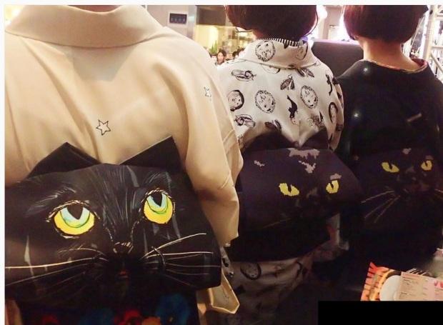 cat-obis